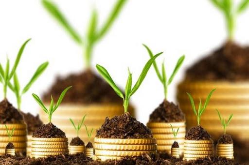 افزایش تعهدات پرداخت غرامت صندوق بیمه کشاورزی