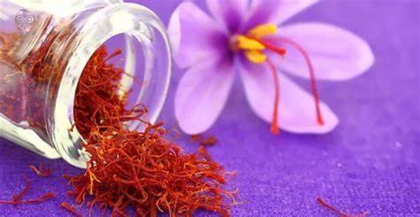 سازمان تعاون روستایی 60 تن زعفران خریداری شده را صادر میکند