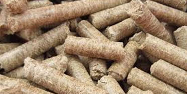 صرفهجویی 100 میلیون دلاری درصورت تأمین به موقع ارز برای واردات کنجاله سویا