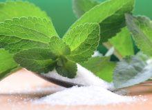 پژوهش درباره انواع گیاهان قندی در دستور کار مؤسسه تحقیقات اصلاح و تهیه بذر چغندرقند