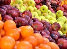 تقویت تشکلهای بخش کشاورزی اصلیترین راهکار کنترل بازار میوه و حذف واسطهها