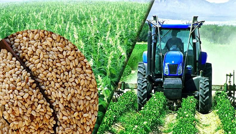 درخواست ۲۰ هزار میلیارد ریال تسهیلات بانکی برای تهیه و تدارک نهاده های کشاورزی