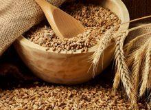 دولت اقدام غیرقانونی خود درباره گندم را اصلاح کرد