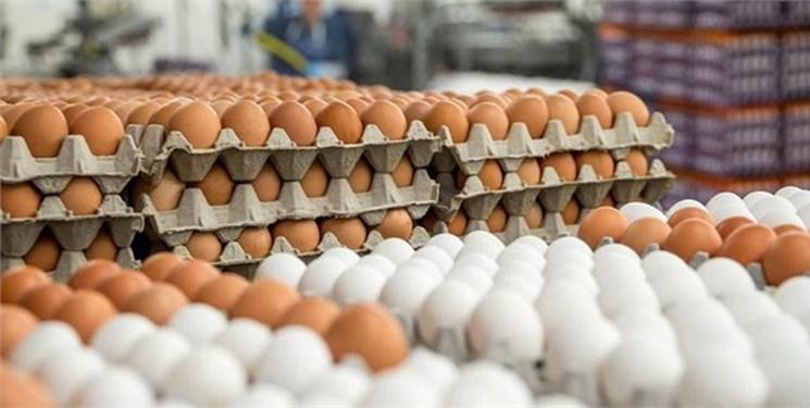 هشدار تولیدکنندگان به افزایش قیمت تخممرغ
