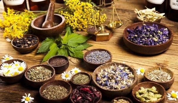 راه اندازی باراندازهای گیاهان دارویی در کشور