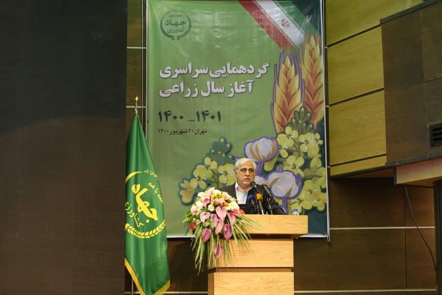 پایداری کشاورزی در گرو توجه به الگوی کشت و بهرهوری