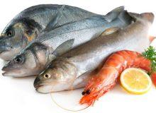 پیشبینی ظرفیت پرورش ۳۵۰ هزار تن میگو و ماهی در آبهای ساحلی شمال و جنوب کشور