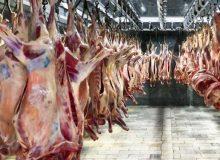 ثابت شدن قیمت گوشت در بازار
