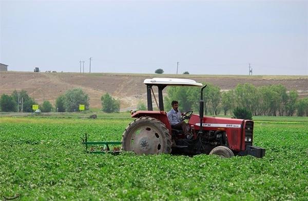 ایجاد شهرکهای تخصصی تولید نهادههای کشاورزی