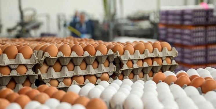 قیمت جدید تخممرغ درب مرغداری ۱۴ هزار تومان تعیین شد