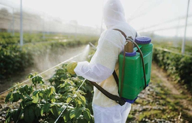 تخصیص ۱۵۰ میلیون دلار برای تدارک بهینه و هدفمند آفتکشهای کشاورزی در سالجاری