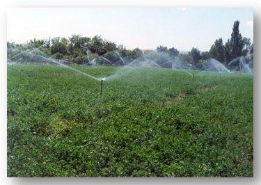 پیشبینی 3 هزارمیلیارد تومانی اعتبار بخش آب در بودجه 1400