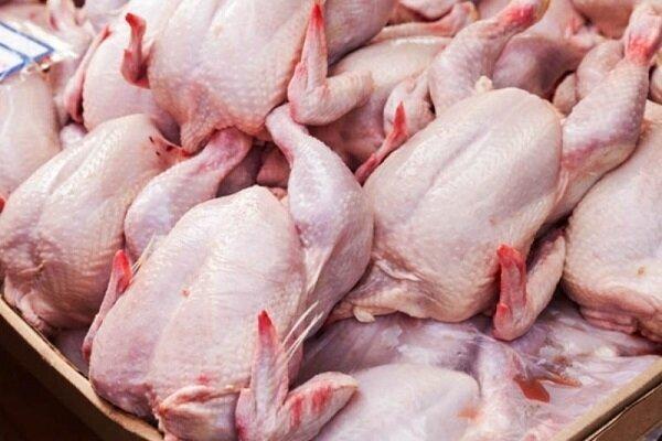 گوشت مرغ از فردا به میزان نیاز وارد بازار میشود