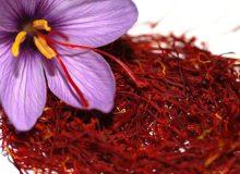 ۱۷ کشور جدید، واردکننده زعفران ایران شدند