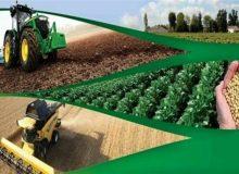 تأمین و توزیع ۷۵ درصدی کودهای کشاورزی توسط سازمان مرکزی تعاون روستایی
