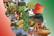 ارزآوری ۸۹۶ میلیون دلاری صادرات بخش کشاورزی و غذا در دو ماهه اول سال جاری