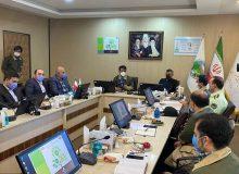 سازمان جنگلها و ستاد مقابله با قاچاق کالا تفاهمنامه همکاری امضا کردند
