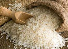 ممنوعیت فصلی واردات برنج به طور کامل رفع نشده