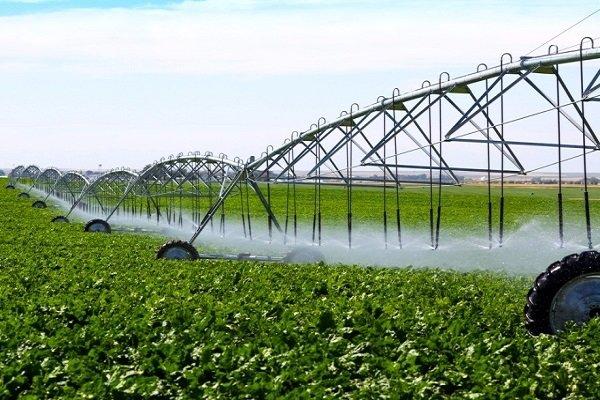 تولید ۹۵ درصد تجهیزات سامانههای نوین آبیاری در کشور