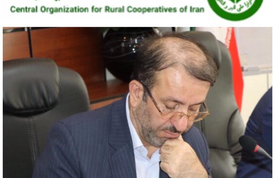 آغاز خرید تضمینی خرما توسط سازمان تعاون روستایی در خوزستان