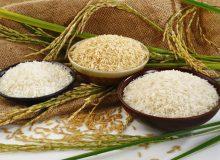 تشریح دلایل معطلی ۱۳ هزار تن برنج در گمرک